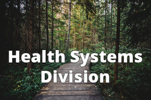 Health Systems Division - 6x4 - Text
