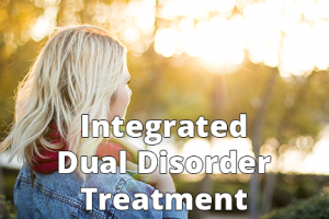 Integrated Dual Disorder Treatment - 6x4 - Text